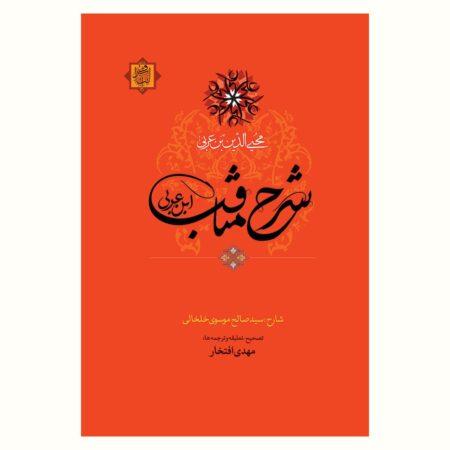 شرح مناقب ابن عربی